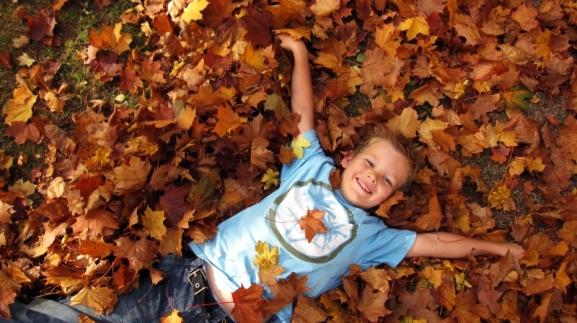 974029-s-autumn-boy